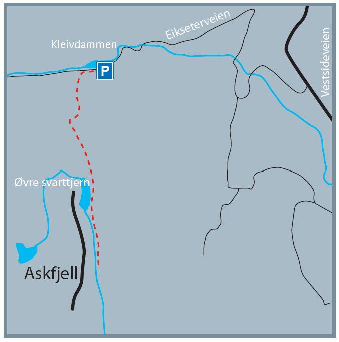 Askfjell-detalj
